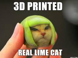 Printer Meme - 3d printed lime cat meme