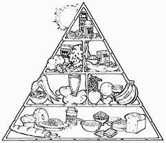 clever design food pyramid coloring sheets preschool sheet