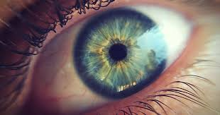 Is Night Blindness Hereditary Cure For Blindness U0027 Gene Therapy To Be Tested On Humans Within 3