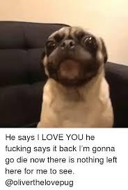 I Fucking Love You Memes - 25 best memes about go die go die memes