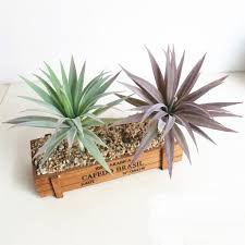 Home Plant Decor by Popular Artificial Agave Plants Buy Cheap Artificial Agave Plants