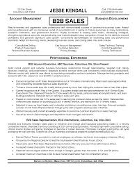 b2b sales resume resume for study