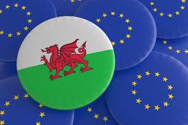 The European Flag Wales And European Union Welsh Flag Eu Flag Badges Illustration