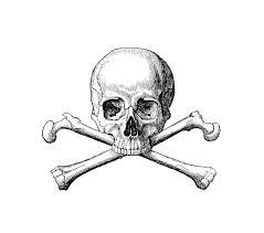 skull and crossbones book illustrations