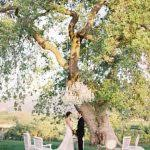 ideas for small intimate weddings best 25 very small wedding ideas