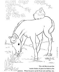 horse coloring pictures farm animals 018