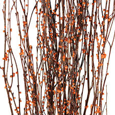 decorative tree branches decorative branches bittersweet birch branches