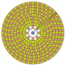Circle Paver Patio Kits Dominion Circle Kits Materials