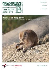 bentley orangutan captivity bias and hominin tool use philosophical transactions