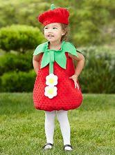 Strawberry Shortcake Halloween Costumes Cotton Blend Candy U0026 Sweets Costumes Ebay