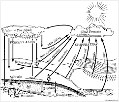 elegant water cycle coloring page free coloring pages online