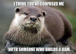 I Made Dis Meme - list of synonyms and antonyms of the word i need dis otter