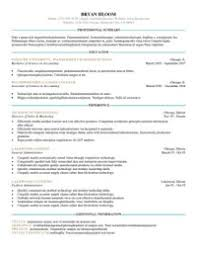 resume templats 25 great resume templates for all aol finance