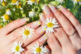 nails art images u0026 stock pictures royalty free nails art photos