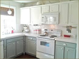 tag for beautiful kitchen cabinets nanilumi