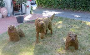 Topiary Dog Treasures At Kitty Clay Southampton Style Wise Trend