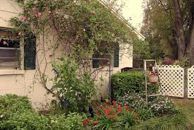 gardening great treasures hide in backyard gardens tbo com