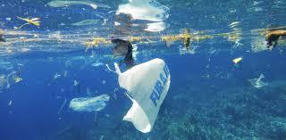peek under the ocean irie soul