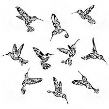 black tribal hummingbirds flash hummer