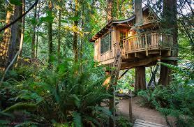 three house treehouse point