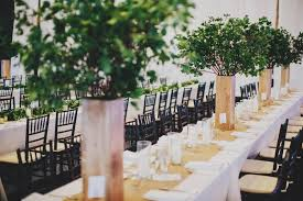 Tree Centerpieces Tall Plant Centerpieces Small Tree Centerpieces Farm Table
