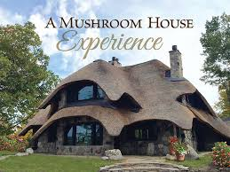 Clinton Houses Charlevoix Mushroom Thatch House Walk To D Vrbo