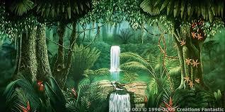 jungle backdrop tropical jungle 3 backdrops fantastic australia