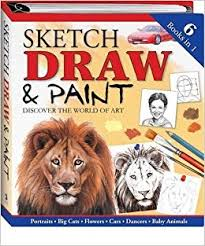 sketch draw and paint binder 9781741832006 amazon com books