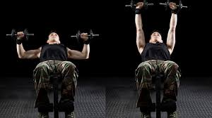 Bench Pressing With Dumbbells Dumbbell Bench Press Workout For Explosive Pressing Power