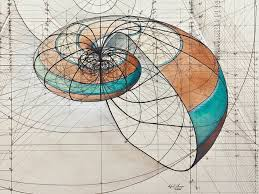 coloring book celebrates mathematical beauty of nature with hand