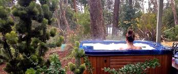 mirkwood forest u2013 self contained spa cottages
