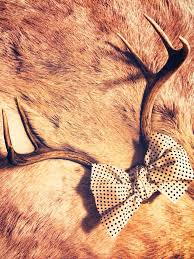 Christmas Decorations Using Deer Antlers by Best 20 Deer Antler Decorations Ideas On Pinterest U2014no Signup