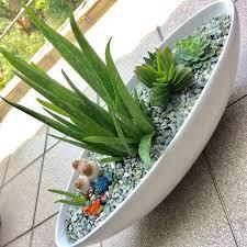 Miniature Indoor Plants by Indoorplants Sur Twipost Com