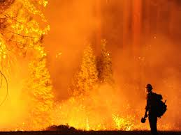 Wildfire Explosion Gif by Fire Tracker U0027 Online Tool To Monitor Blaze Near Yosemite Kuow