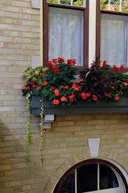 26 best planters u0026 window boxes images on pinterest window boxes