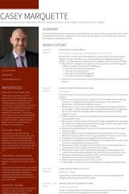 senior director resume samples visualcv resume samples database