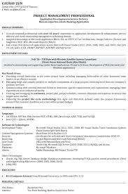 software skills for resume u2013 okurgezer co