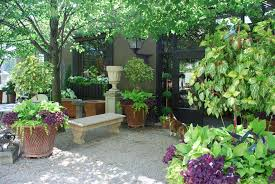 container gardens for shade home outdoor decoration