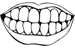 Picture Of Healthty Teeth In Dental Health Coloring Page Color Luna Brushing Teeth Coloring Pages