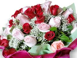 Bouquet Of Roses Bouquet Of Roses Flowers U0026 Nature Background Wallpapers On