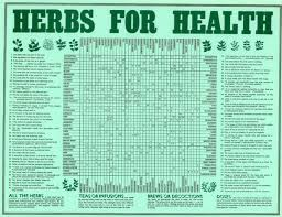 herb chart herbs for health chart rolled in tube all rare herbs