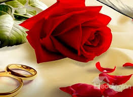 red rose rings images 3d red rose with golden rings printed cotton 4 piece bedding sets jpg