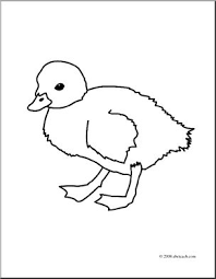 clip art duckling coloring abcteach abcteach