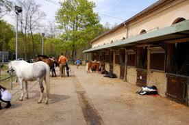 ucpa siege social bayard equitation