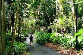 City Botanic Gardens Brisbane City Botanic Gardens Brisbane
