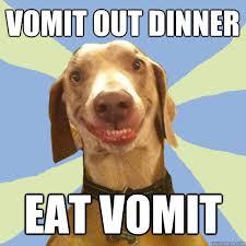 Vomit Meme - vomit out dinner eat vomit disgusting doggy quickmeme
