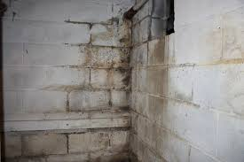 mold on basement walls cinder block basement decoration ideas