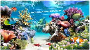 wallpaper ikan bergerak untuk pc download screensaver aquarium 3 8 build 58 premium full version