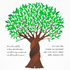 tree of life braided tree of life u2014 ketubah arts