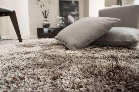 tappeto a pelo lungo tappeti pelo corto idee di design per la casa rustify us